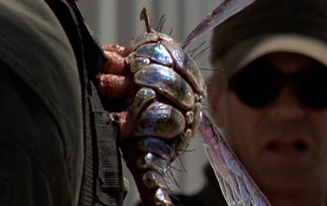 Stargate SG-1 - Lexikon - Insekten BP6-3Q1 - 1