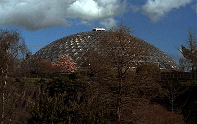 Stargate SG-1 - Lexikon - P7J-989 - 2