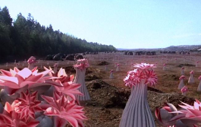 Stargate SG-1 - Lexikon - Pflanzen auf PJ2-445 2