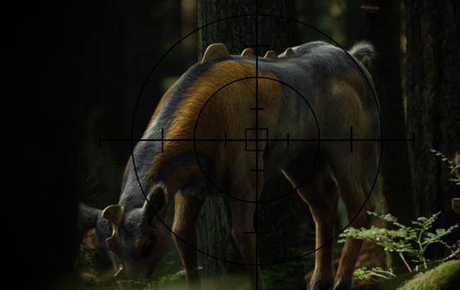 Lexikon - Stargate Universe - Weltraum-Reh 2x16 Die Jagd - 1